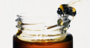 How Often To Use Manuka Honey On Skin