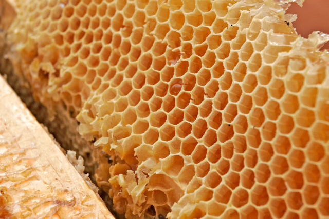 How To Use Manuka Honey For Stomach Problems