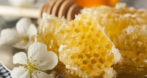Manuka Honey Benefits For Digestion