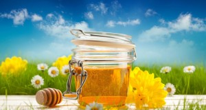 Manuka Honey Benefits for Weight Loss